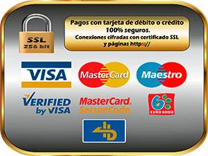 Pago Seguro Vis 7 MasterCard - SSl